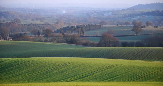 Fields near Callaughton