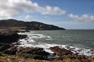 On the Coastal Path