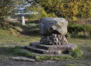 Glacial boulder