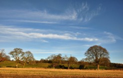 Cirrus over Shirlett