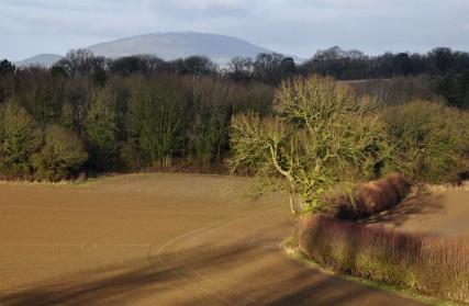 View to the Wrekin
