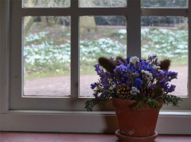 Snowdrops outside the window