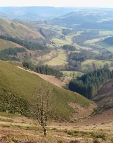 Dee valley