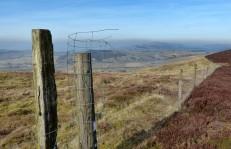 Fence and Famau