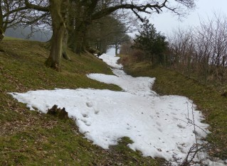 Snow-filled path