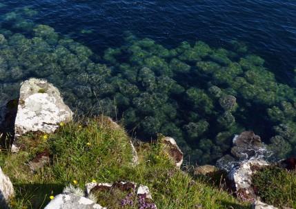 Submerged rocks