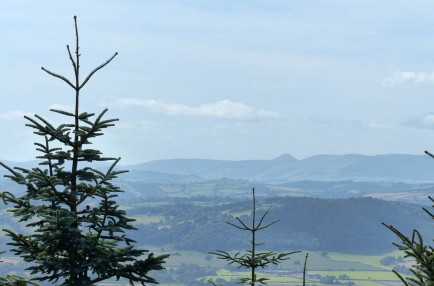 A view to Radnor Forest