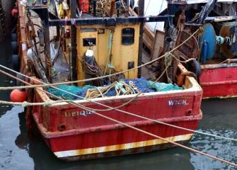 Pittenweem working boats