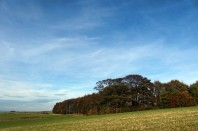 Wolds