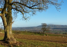 Brown Clee view