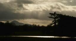Cedars and Stretton hills