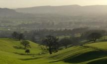 Mortimer Forest skyline