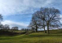 Beside Bullhill Brook