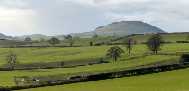 Fields and Caradoc
