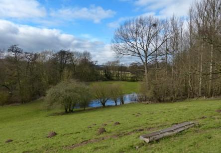 Fields by Mor Brook