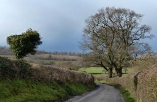 Lane to Kenley