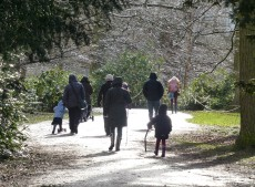 Walkers in the woods