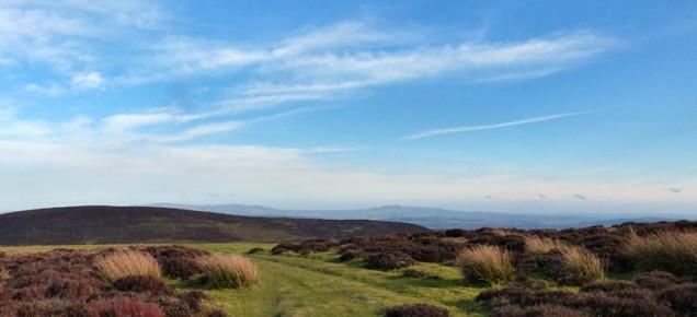Long Mynd panorama
