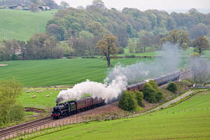 44932 - Steam in the Landscape th