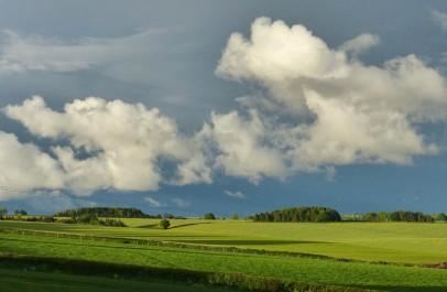 Wenlock Edge fields