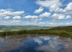 The pond on the Mynd