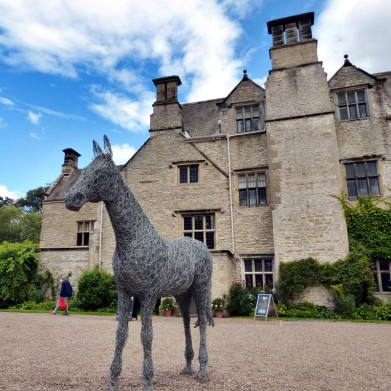 Horse and house