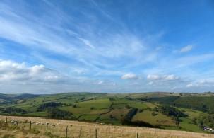 Rolling grassy hills
