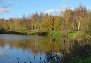 Hurst Farm pool