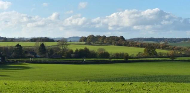 The green fields of Morville