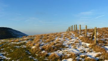Fence and Caer Caradoc