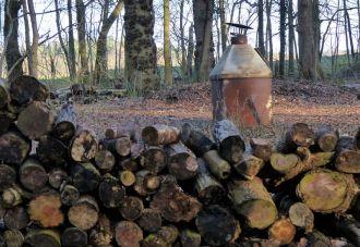 Woodman's clearing
