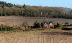 Bould Lane