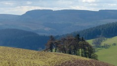 Hopesay Hill and Clun forests