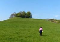 Lodge Hill