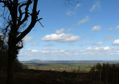 Wrekin view