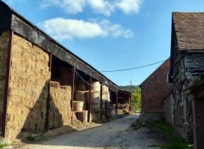 Wigwig farm