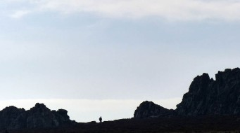 A rocky top