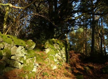 Ancient wall