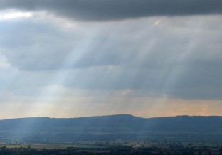 Sunbeams over Mortimer Forest