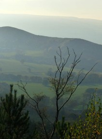 The Lawley and the Mynd