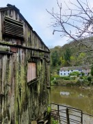 Eustace's shed