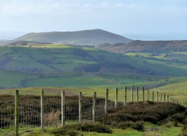 Fence and Corndon Hill