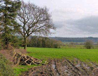 Firewood, mud and Wenlock Edge