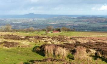 A Shropshire vista