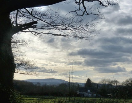 A view to Brown Clee