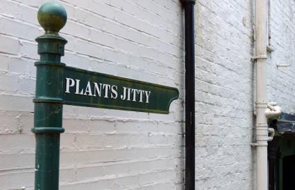 Plants Jitty