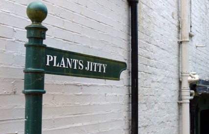 Plants Jitty