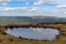 Pond and Stiperstones