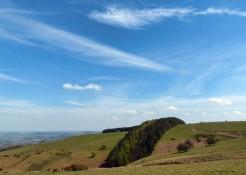 Mohican hillside