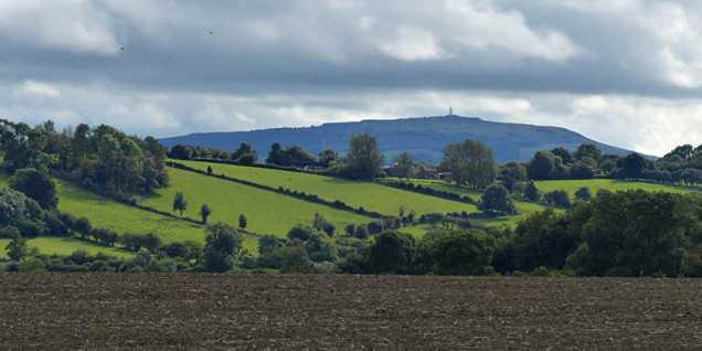 Brown fields and Brown Clee